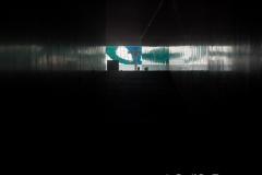RDW-Brazil-07September-023-9.jpg