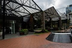 RDW-Auckland-21September-213226.jpg