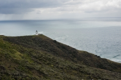 RDW-Cape Reinga-26September-131431.jpg