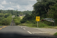 RDW-Brazil-29August-017-10.jpg