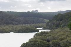 RDW-Waitangi-25September-163245.jpg
