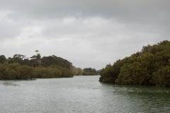 RDW-Waitangi-25September-165547