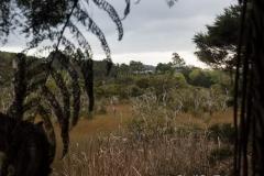 RDW-Waitangi-25September-170958.jpg