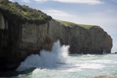 RDW-Dunedin-23October-113246.jpg
