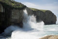 RDW-Dunedin-23October-113256.jpg