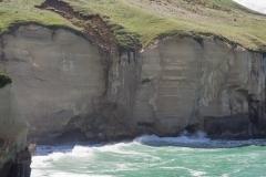 RDW-Dunedin-23October-114731.jpg